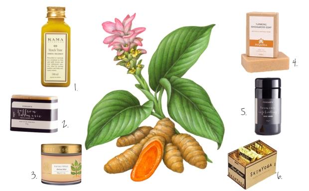ayurveda ingredients turmeric
