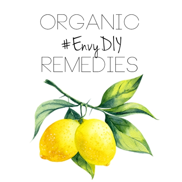 diy envy box lemon